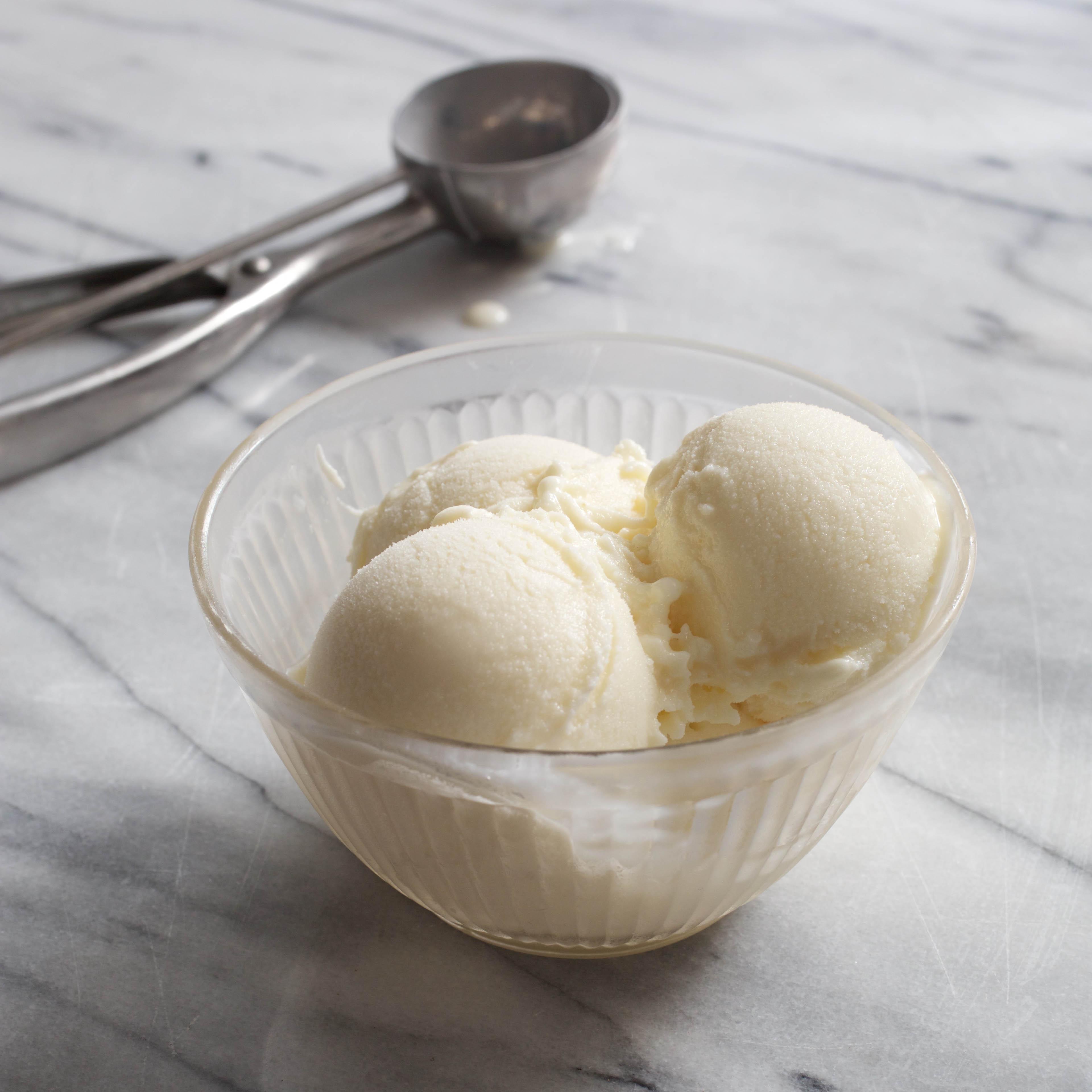 The Best Homemade Frozen Yogurt Cook S Illustrated