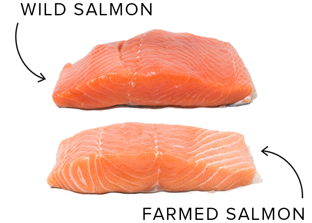 Ideal Doneness Temperature For Wild Salmon Cook S Illustrated