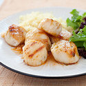 Charcoal-Grilled Sea Scallops