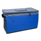 Coleman Collapsible Chest Cooler