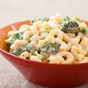 Skillet Broccoli Macaroni and Cheese