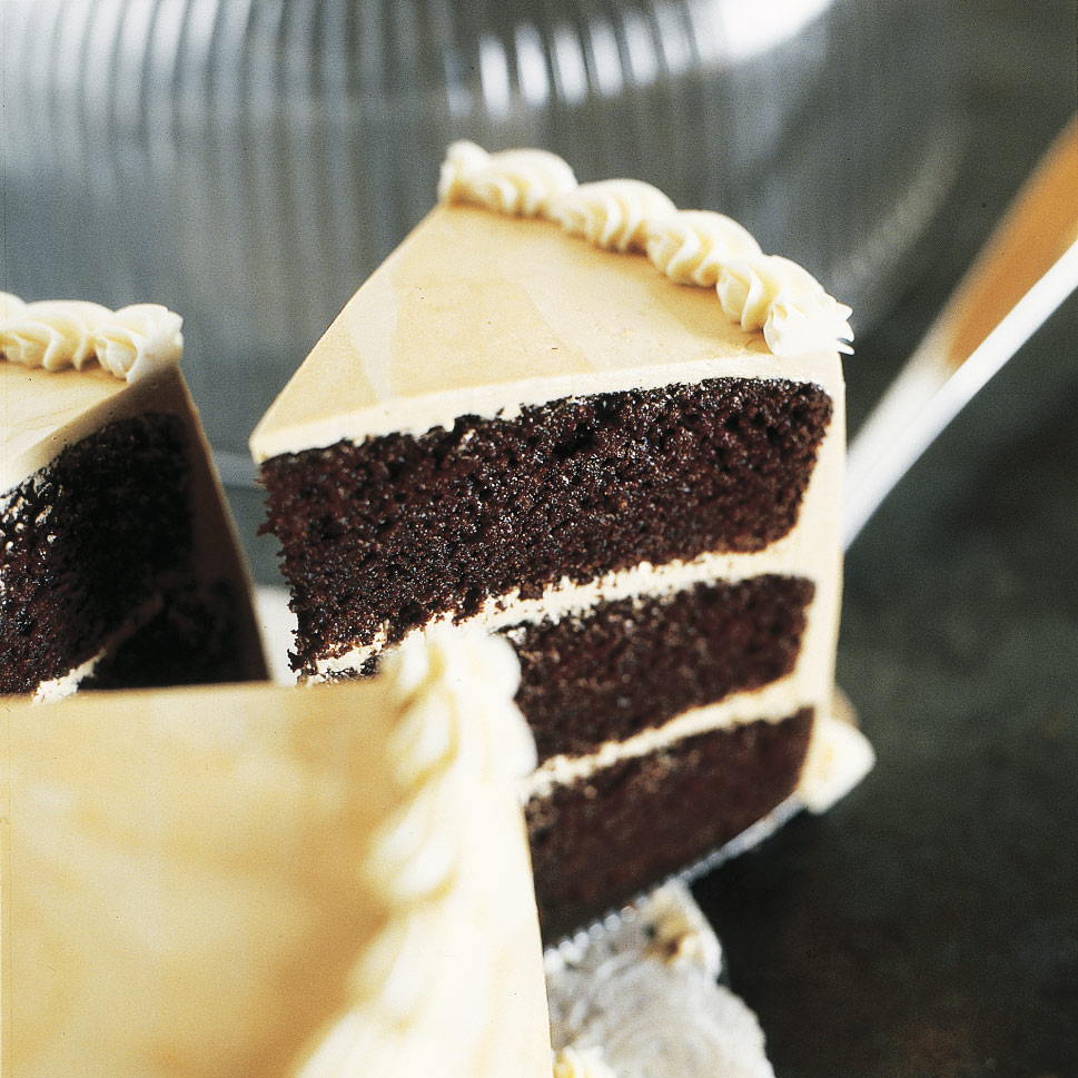Moist and Tender Devil's Food Cake Recipe - Cook's Illustrated