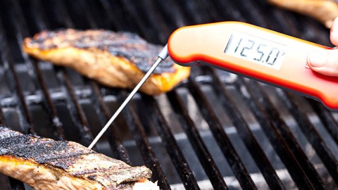 America S Test Kitchen Best Instant Read Thermometer For Grilling