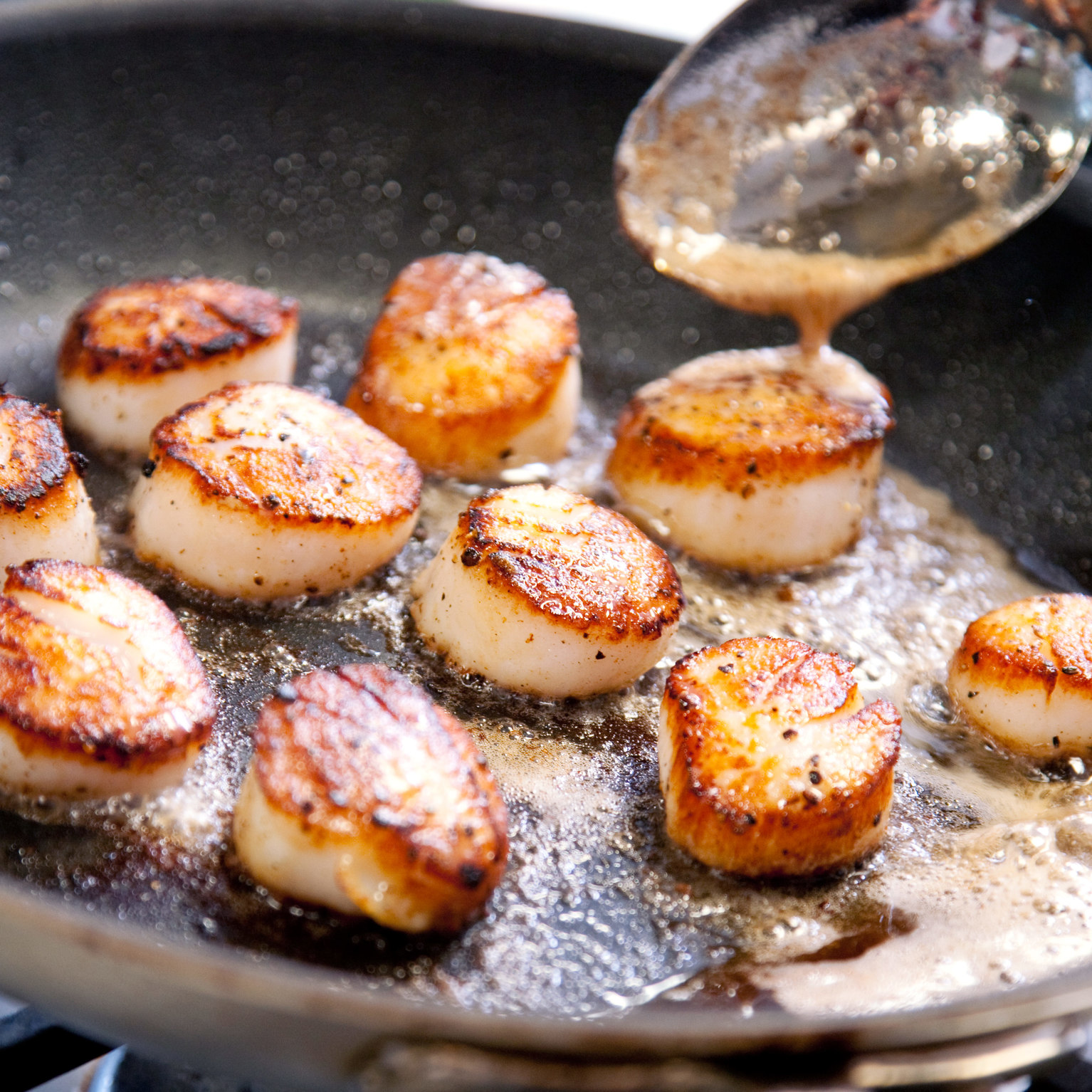 Pan-Seared Scallops