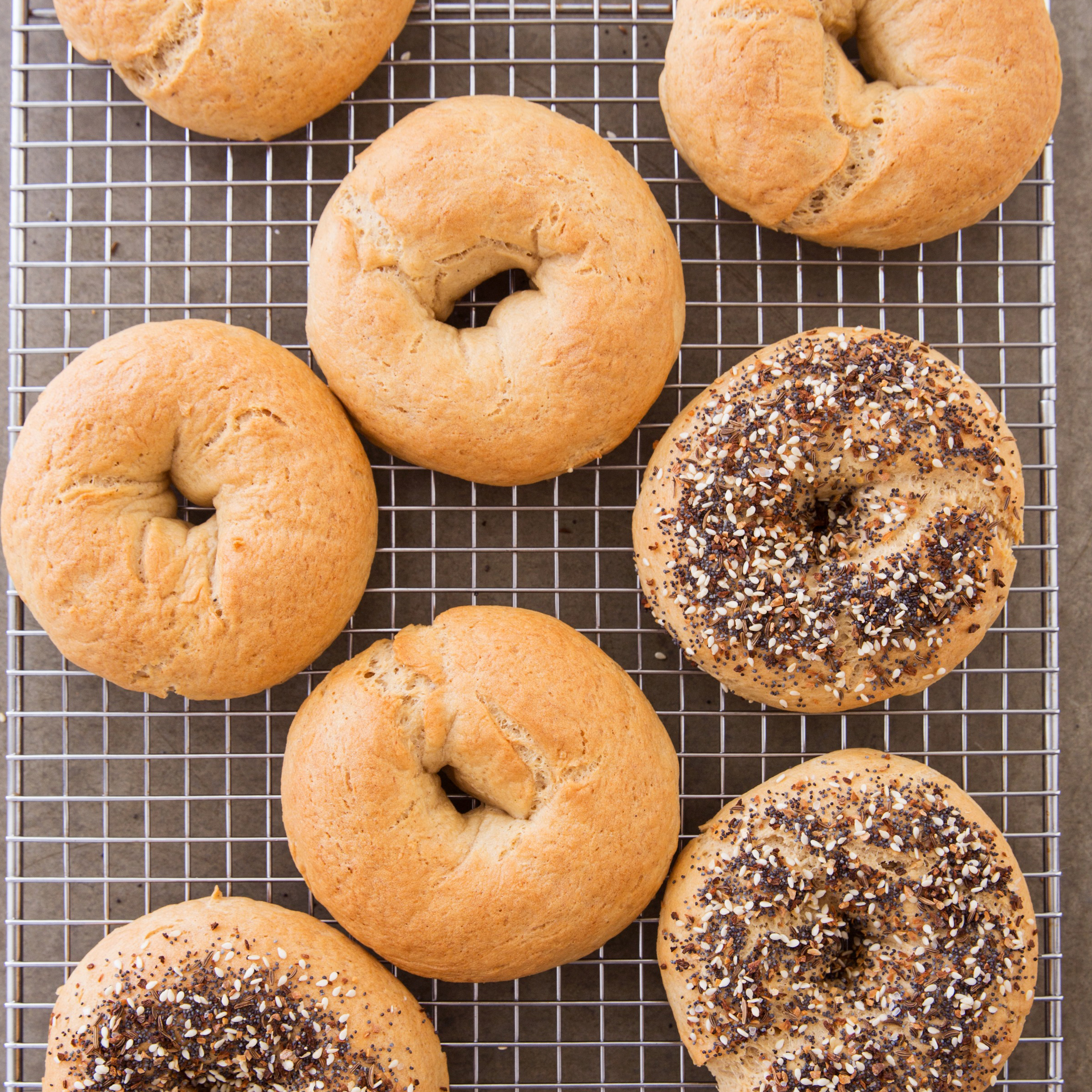 gluten free bagels america s test kitchen