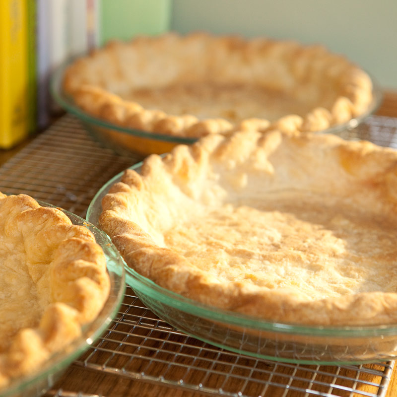 America S Test Kitchen Foolproof Pie Dough Recipe