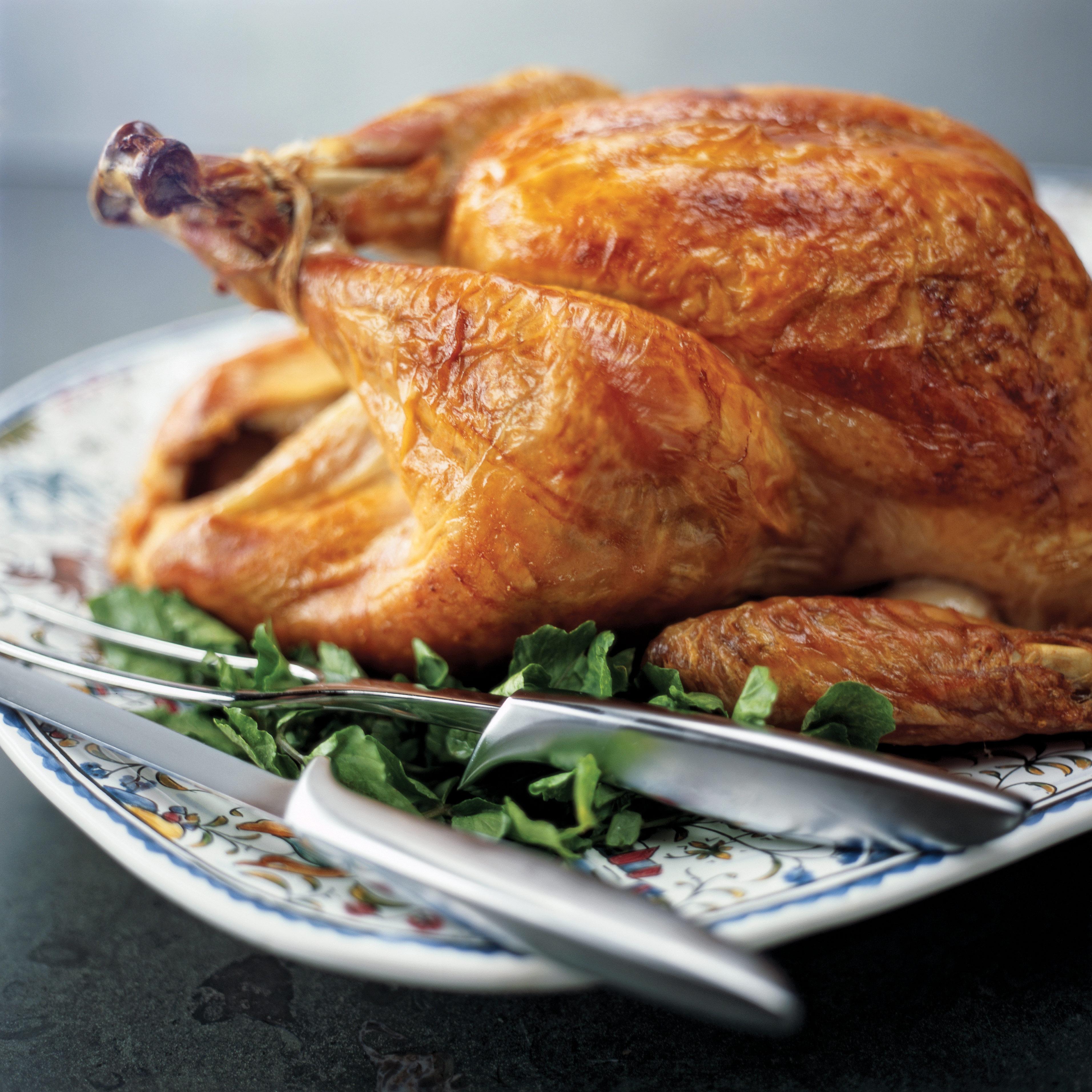 Roast Crisped Skin Turkey Recipe America S Test Kitchen